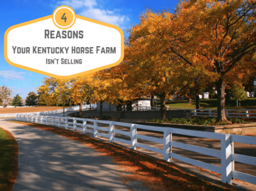 Tips for Selling Your Kentucky Horse Farm