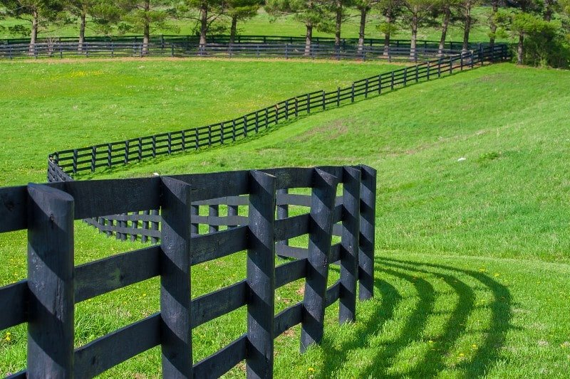 Choosing The Right Horse Fence
