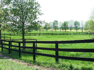 Midway KY Land For Sale