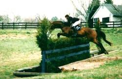 KY Horse Farms - Hill Parker Jumps