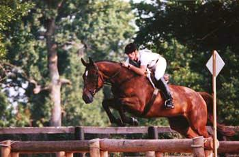 Kentucky Horse Farms - Hill Parker Jumping